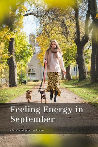 Feeling Energy in September dog walking