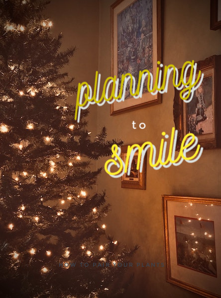 Planning to smile