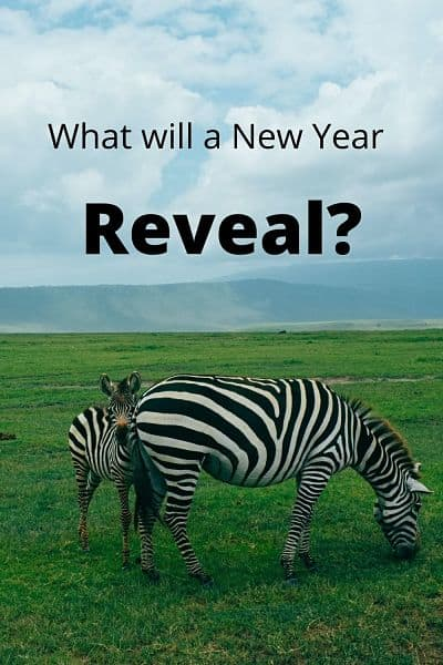 What Will A New Year Reveal?